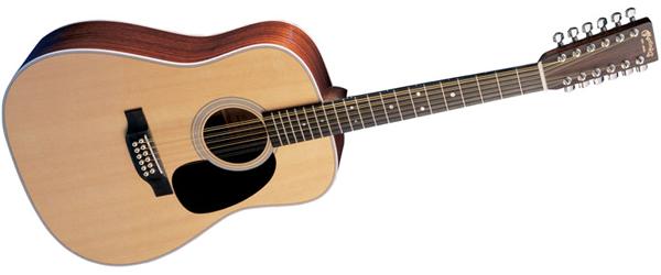 12-snarige gitaar